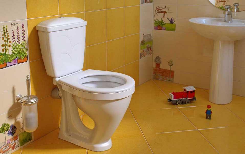 Унитаз для частного дома как правильно выбрать