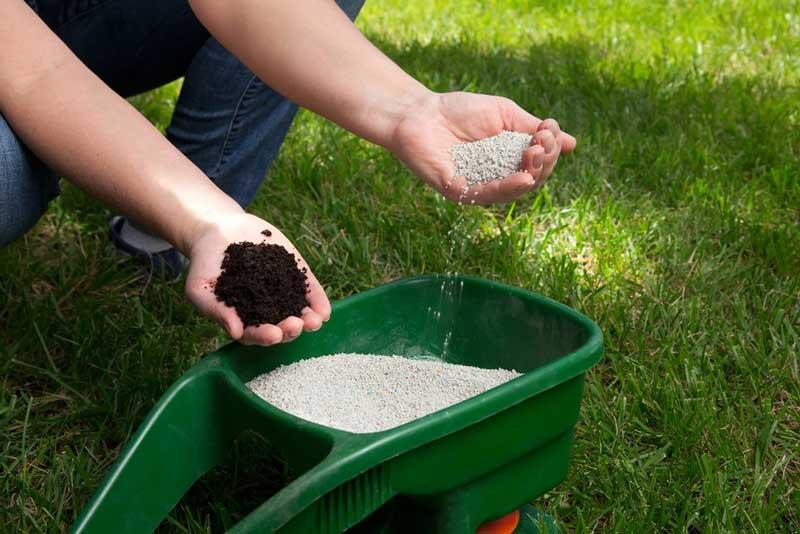 Внесение удобрений в газон