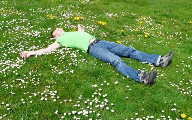 Как ухаживать за газоном летом правильно